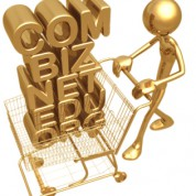 Promo Domain .in cuma 25.000 doang!!